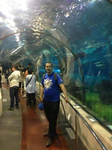 Im berühmten Aquarium am Hafen von Barcelona